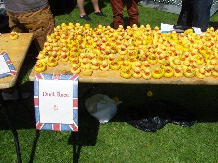 Ducks for the duck race