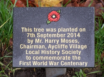 WW1 Tree planting plaque Harry Moses