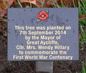 WW1 Tree Planting Plaque Wendy Hillary