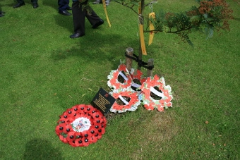 Wreaths at tree laid by pupils